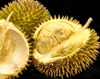 amazing durian fruit health benefits