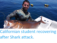 http://sciencythoughts.blogspot.co.uk/2017/12/californian-student-recovering-after.html