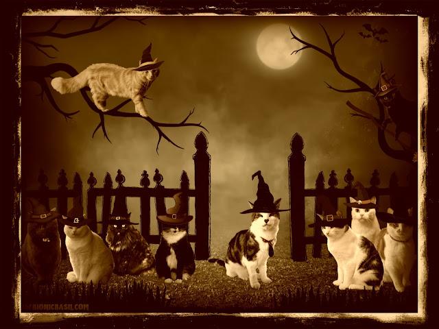 Basil & The B Team Spooky Halloween Selfies ©BionicBasil® Caturday Art