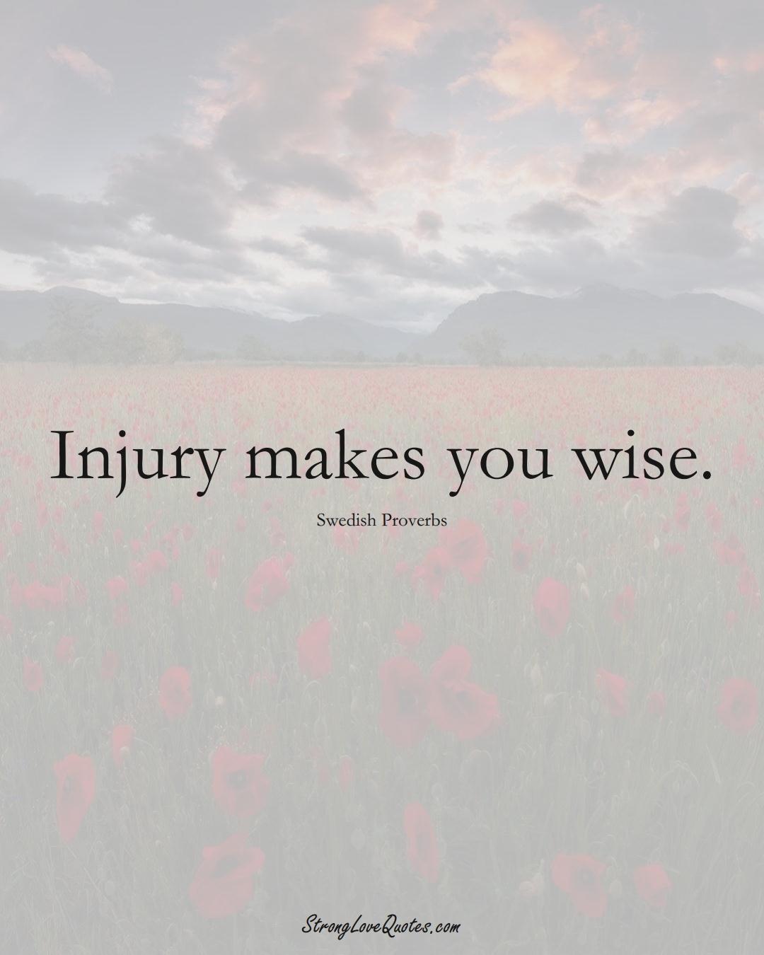Injury makes you wise. (Swedish Sayings);  #EuropeanSayings