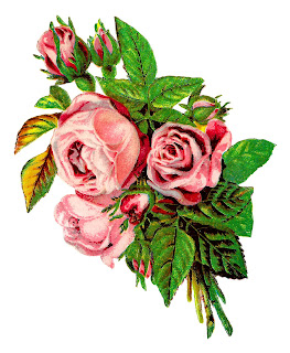 rose flower shabby chic botanical artwork image transfer clipart