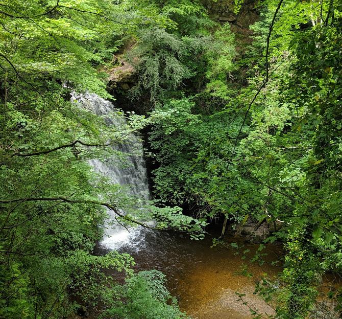 Falling Foss Tea Garden (near Whitby) - waterfall