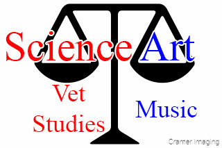 Graphic of a scale showing balance between science and art studies by Cramer Imaging