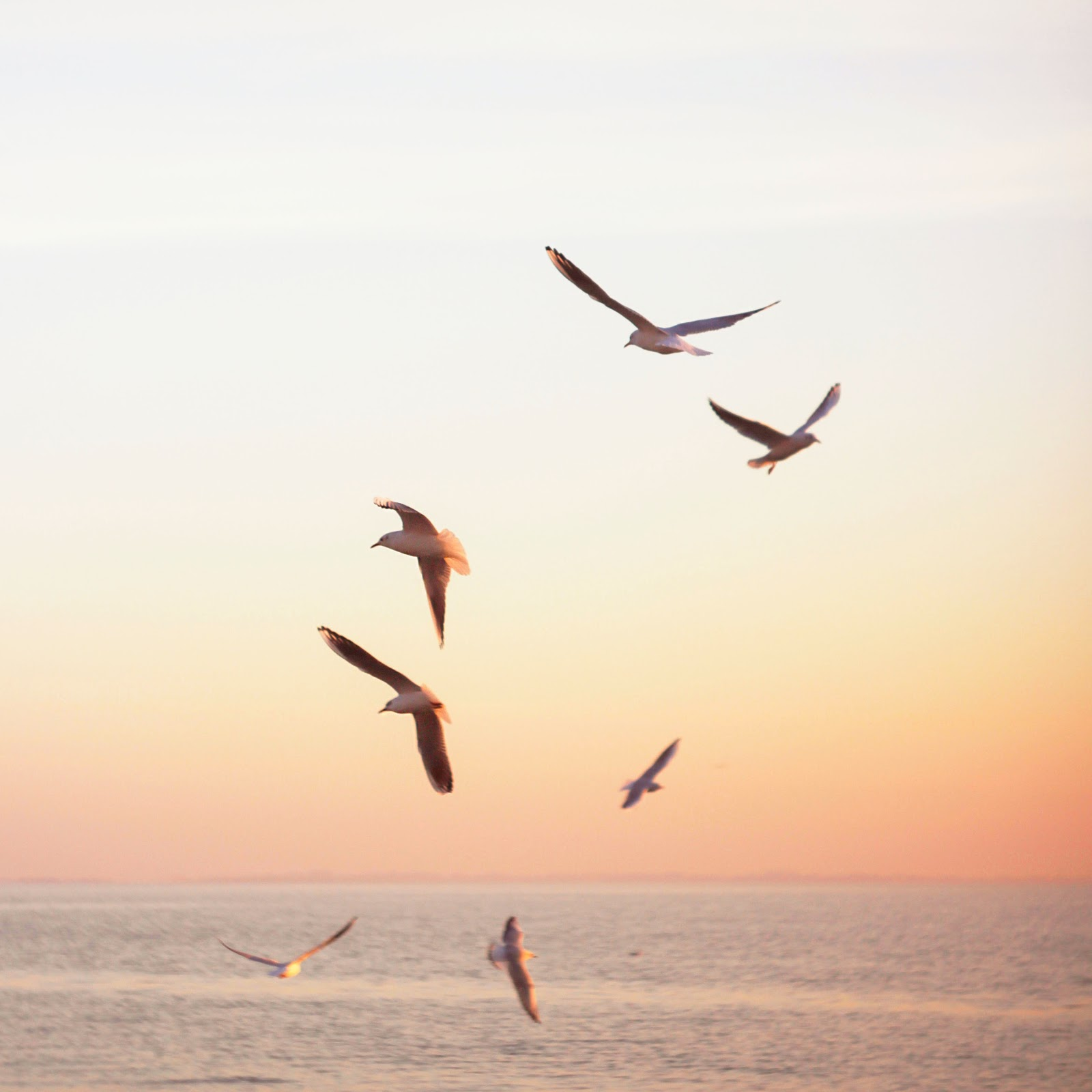 The 3 Benefits of Adversity