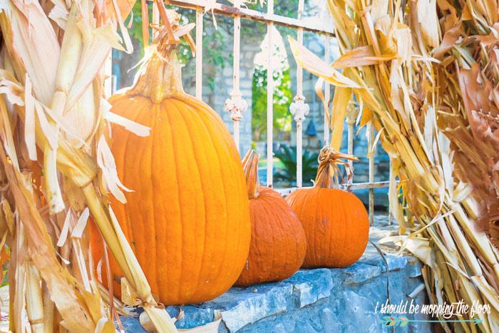 Pumpkins in Hay