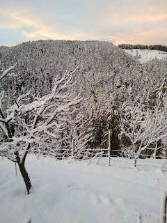चैत्र संक्रांति को रजत धवल बर्फ की तह से ढका निहरी का कमराह