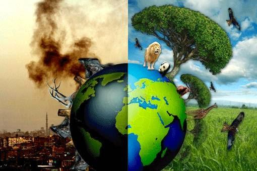 Resultado de imagen de proteccion del medio ambiente