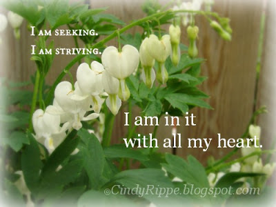 White-Bleeding-Hearts, Vincent Van Gogh quote, Buddha Quote, Working towards a goal, White flowers, Florals-Family-Faith, Cindy Rippe