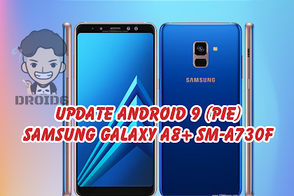 Samsung Galaxy A8+ SM-A730F Update Android 9 (Pie)