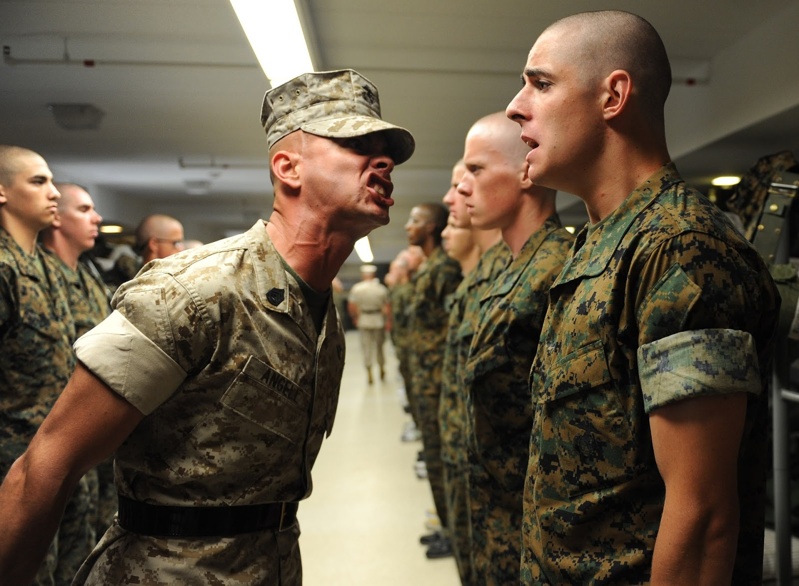 marine recruits standing in line with a drill instructor yelling at one of the recruits for blog post about tv show the selection