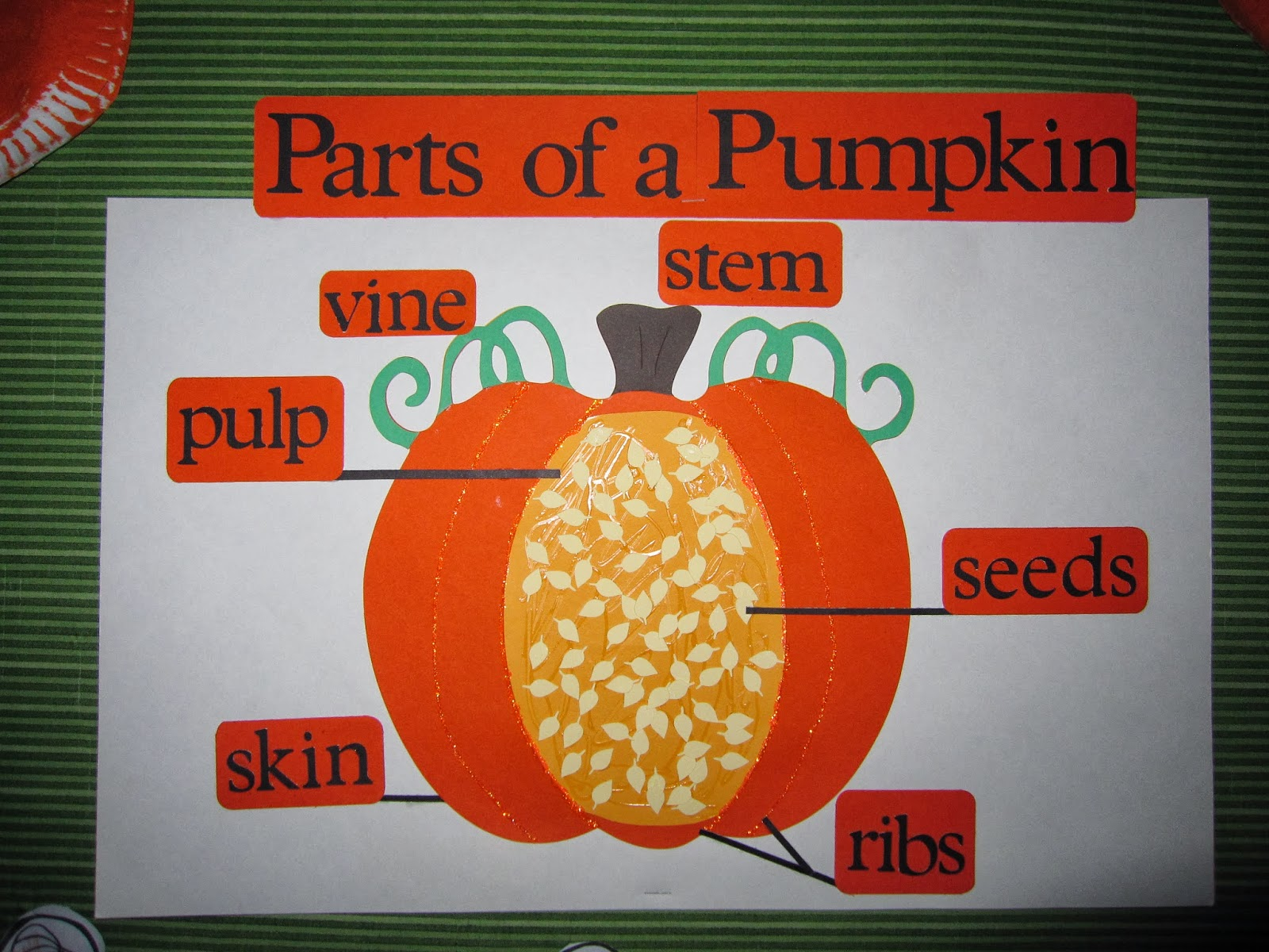 Preschool For Rookies What Inside A Pumpkin