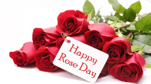 rose day friend