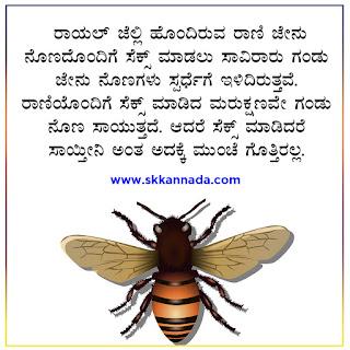Honey Bee Amazing Facts in Kannada