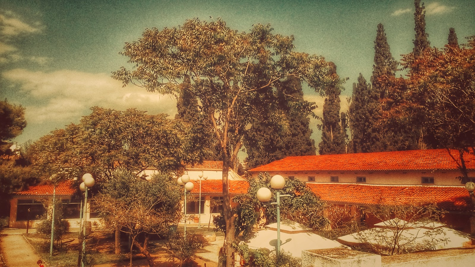 Colorful photo shot from a rooftop, showing a tree with leaves only on top of it and a long-shaped building with roof-tiles besides it. 'Tree and Building' photo by Kostas Gogas.