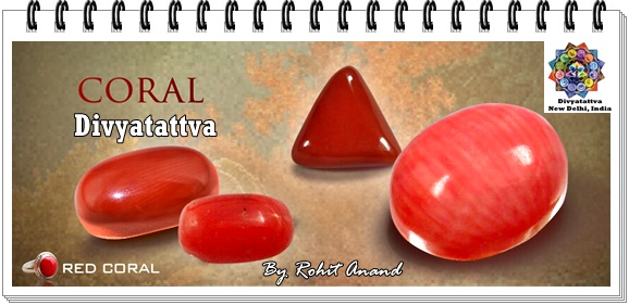Coral Gemstone Benefits Red Coral Moonga In Vedic Astrology By Occultist Astrologist Shri Rohit Anand