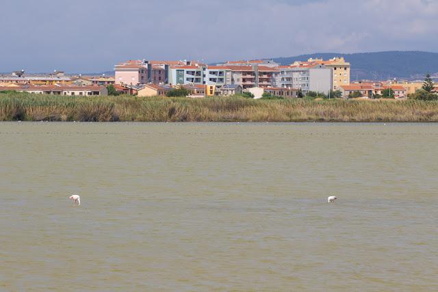 Via lungo Saline-Cagliari