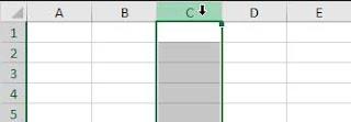 Cell (Sel), Rows (Baris) dan Column (Kolom)