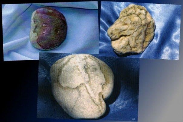Ο Κουστό… όπως τον είδε έτοιμο και τον αναγνώρισε, πάνω στην πέτρα. Δεξιά: Στην πέτρα είδε και το κεφάλι του Βουκεφάλα!