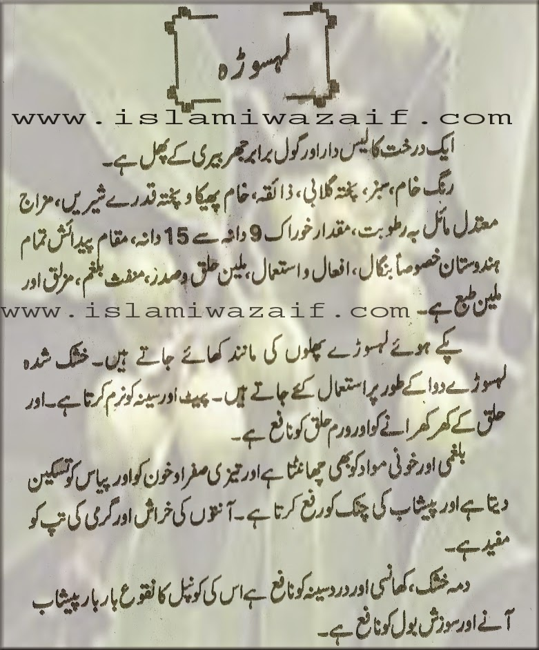 lasora fruit benefits in urdu