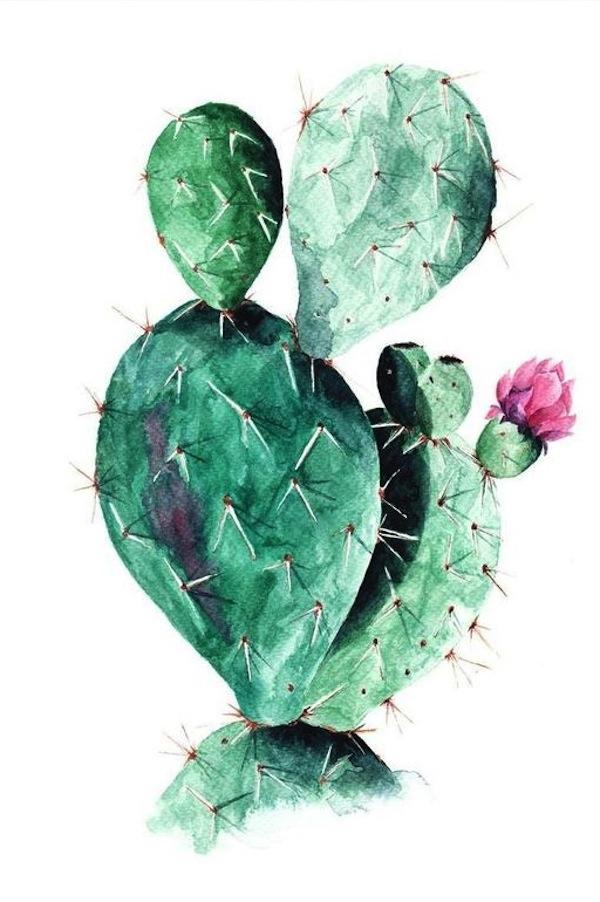 12 láminas decorativas botánicas para personalizar tus propios cuadros