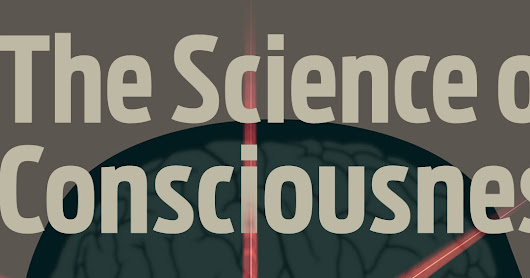 The Science of Consciousness, a hypothesis