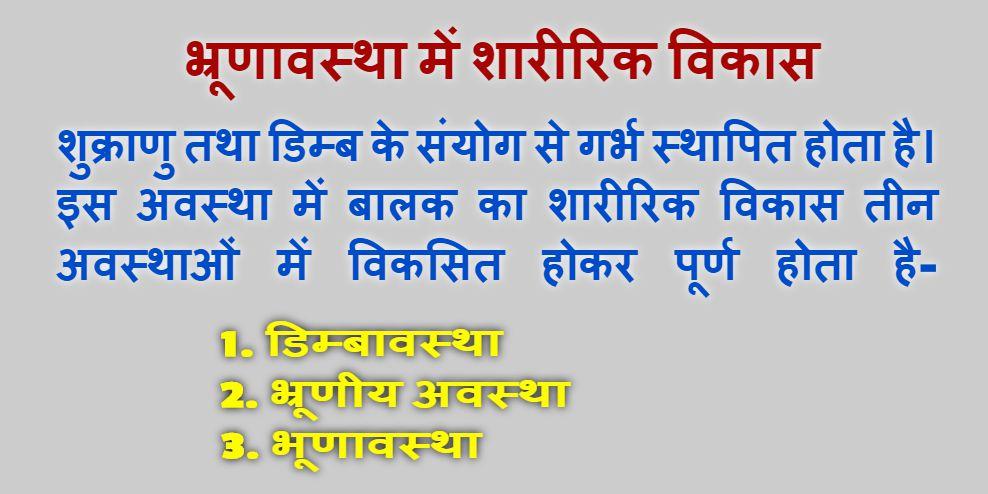 Bhrun Avastha Mein Sharirik Vikas