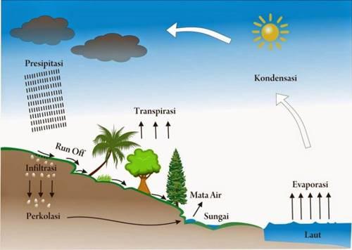 Siklus Air | Pengertian, Urutan, Proses Siklus Hidrologi dan Gambarnya