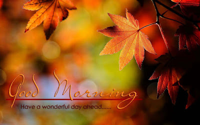 have-a-wonderful-day-good-morning
