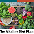 The Alkaline Diet Plan Overview