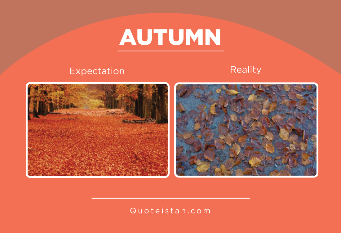 Expectation vs Reality: Autumn