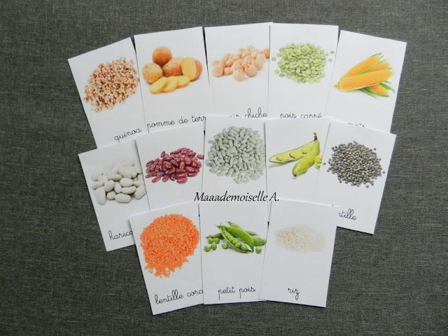 || Cartes de nomenclature ; Féculents