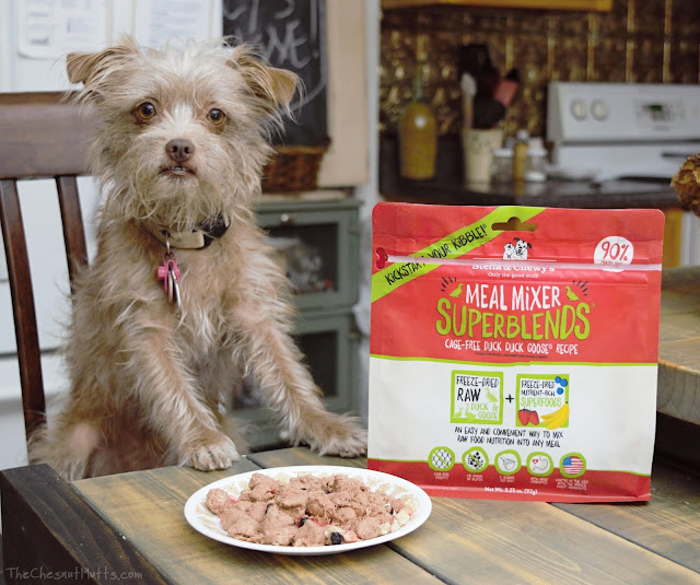 Mini Review: Stella & Chewy's Meal Mixers SuperBlends