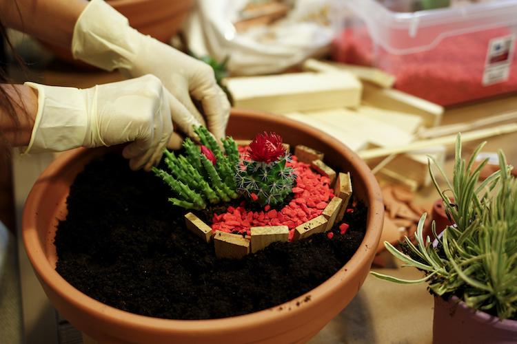 Una pizca de hogar diy c mo hacer un mini jard n en una for Jardines en macetas