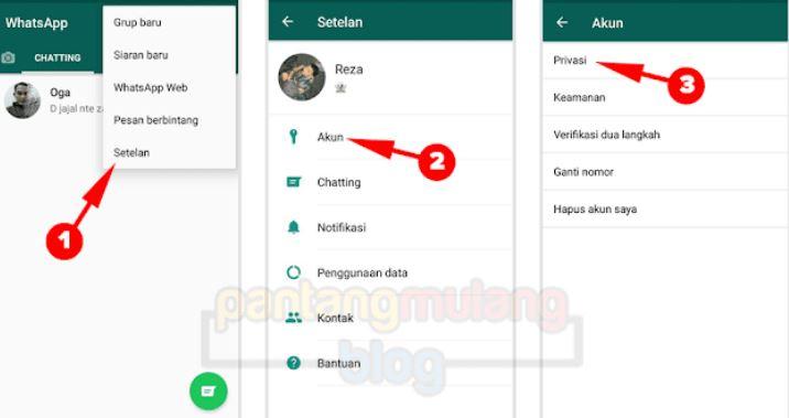 Tak perlu bingung, Begini Cara Mudah Hilangkan Online di WhatsApp