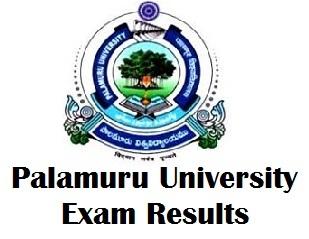 Palamuru University Degree Exam Results 2017