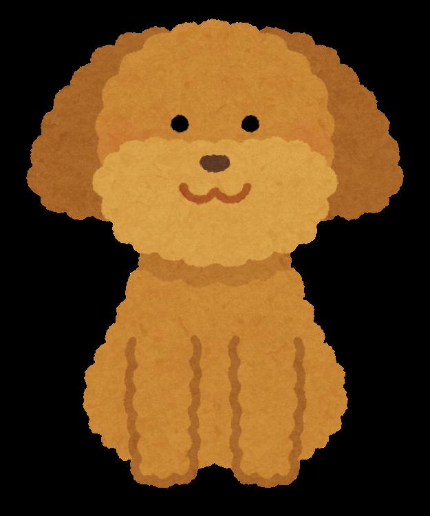 https://1.bp.blogspot.com/-hIKwOKHoYD8/XRHH1BLG_aI/AAAAAAABTXM/FnOZUkAOv9w86j3IxkdR1-bP3Rk7s-WCACLcBGAs/s800/dog_toypoodle_brown.png
