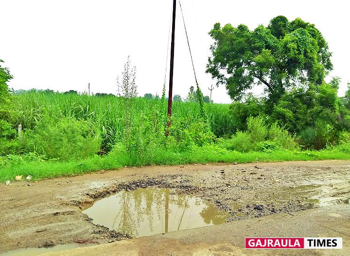 सरकारी विकास के दावों की पोल खोलते ग्रामांचलों के जर्जर सड़क मार्ग