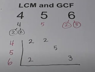 lcm 4 5 6