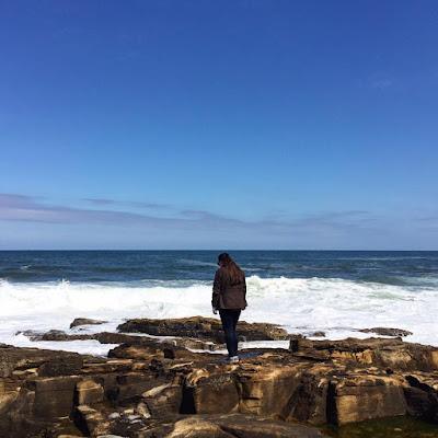 Howick Cove Northumberland Kaleidoscope Peonies