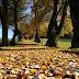 Čekání na podzim