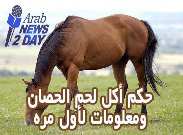 هل تعلم ما هو حكم اكل لحم الحصان ؟ ... الاجابه صادمه .... شاهد من هنا