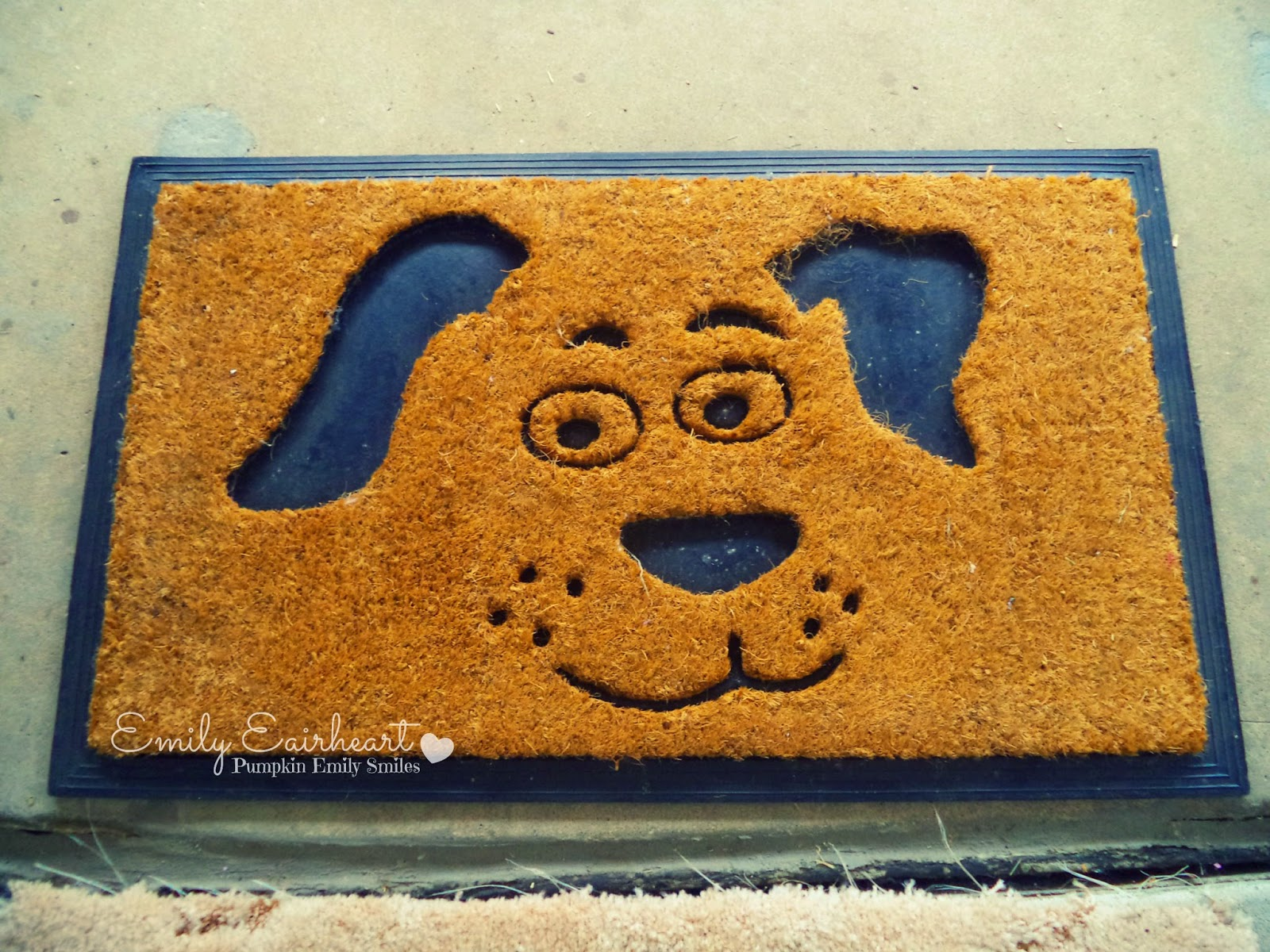 Door mat with a dog face on it.