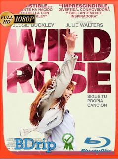 Wild Rose: Sigue tu propia canción (2018) BDRIP1080pLatino [GoogleDrive] SilvestreHD
