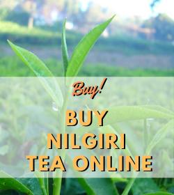 Nilgiri Tea Online