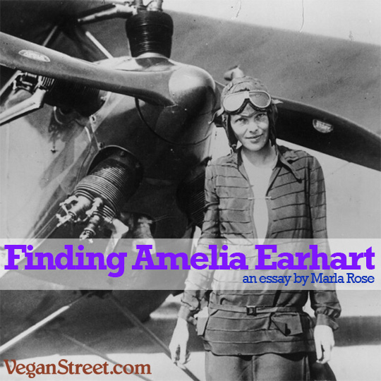 the vegan street blog from the vegan feminist agitator finding lately i ve been thinking about what amelia earhart s second to last thought might have been her last thought was likely along the lines of well