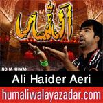 http://www.humaliwalayazadar.com/2016/10/ali-haider-nohay-2017.html