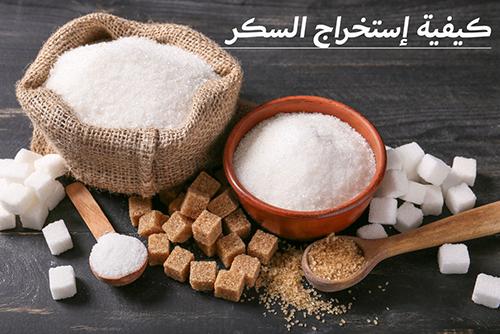 كيفية إستخراج السكر