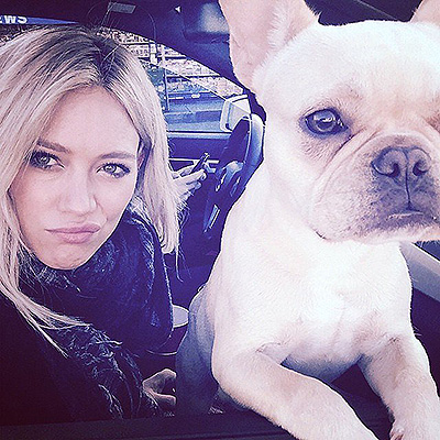 The National Dog Day Hilary Duff