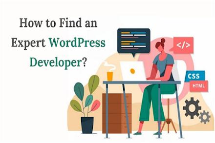 How to Find an Expert WordPress Developer?