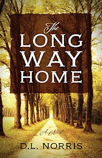 The Long Way Home - a compelling domestic drama by D. L. Norris